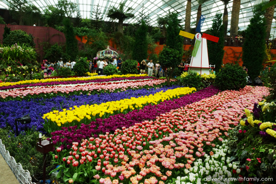 Garden By The Bay Flower Festival gardenthe bay flower dome : garden.xcyyxh