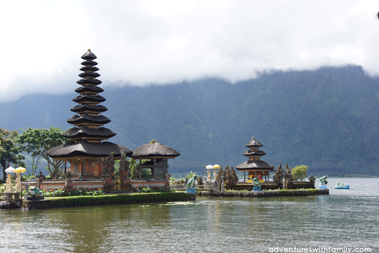 Bali Temples and Padi Fields
