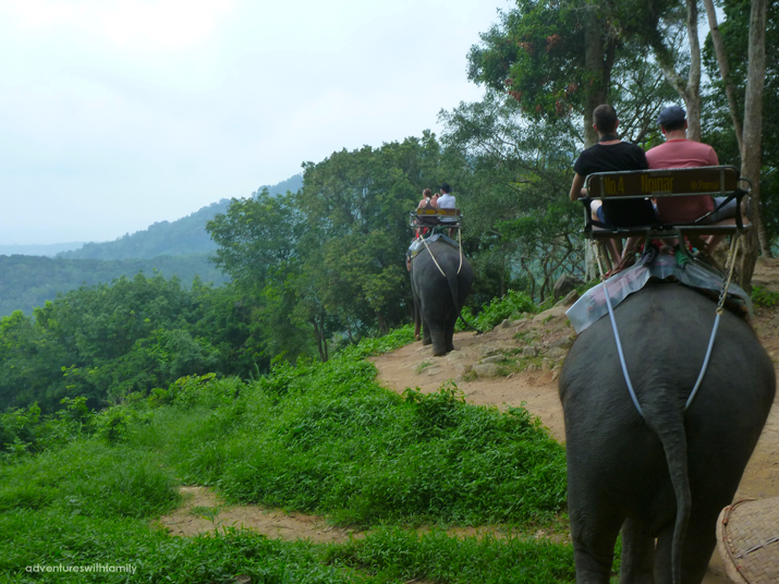 Siam Safari and Elephant Trekking in Phuket