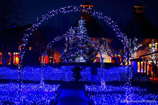 Japan Winter Illumination