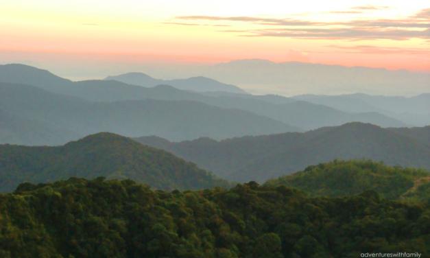 Sunrise on Gunung Brinchang at Cameron Highlands