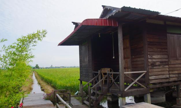 Kampung Dorani Malaysian Homestay