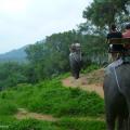 Siam Safari Phuket