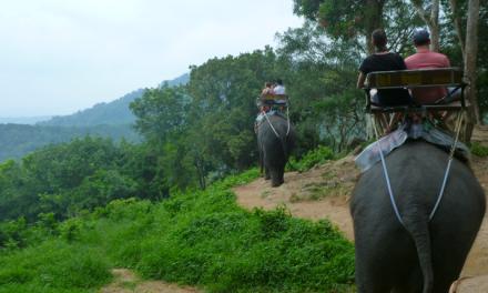 Siam Safari and Elephant Trekking in Phuket