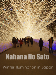 Japan Winter Illumination