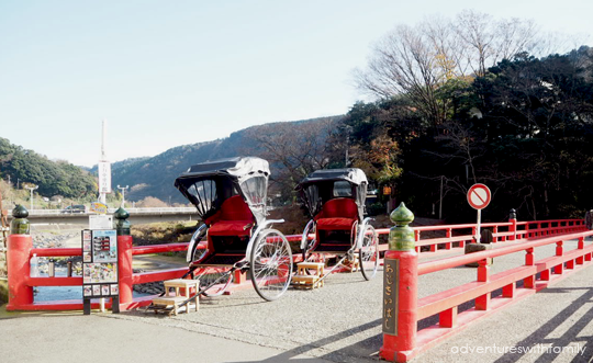 Hakone in Winter