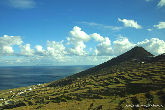 Santorini Plantations